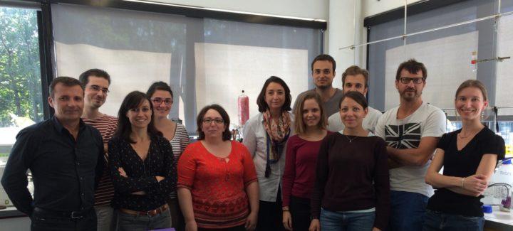 Equipe Innovation Moléculaire et Thérapeutique