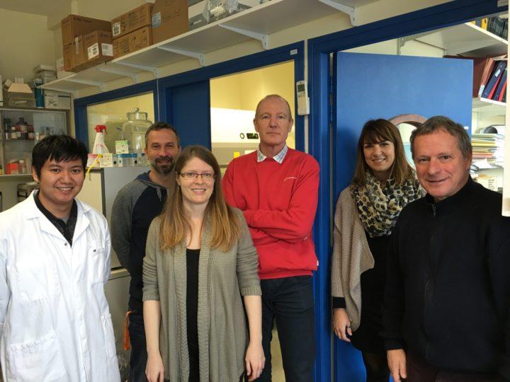 Équipe Récepteur de Cytokine et Signalisation